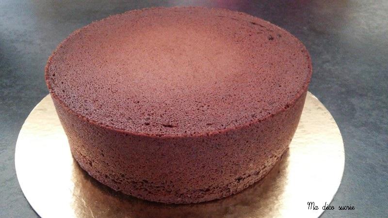 Ma Deco Sucree Molly Cake Chocolat