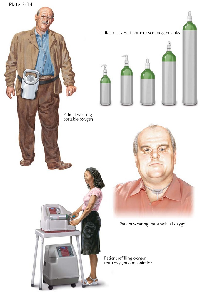 OXYGEN THERAPY IN CHRONIC RESPIRATORY FAILURE (AMBULATORY AND HOME USE