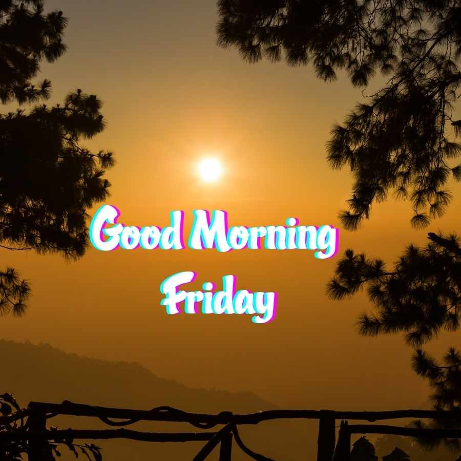 happy good morning