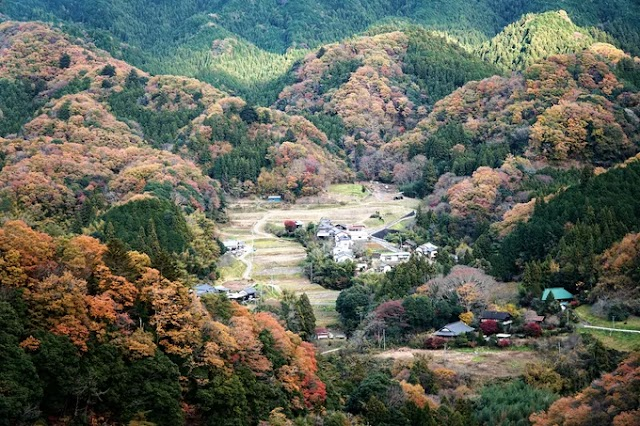 The autumn full of colors in northern Japan