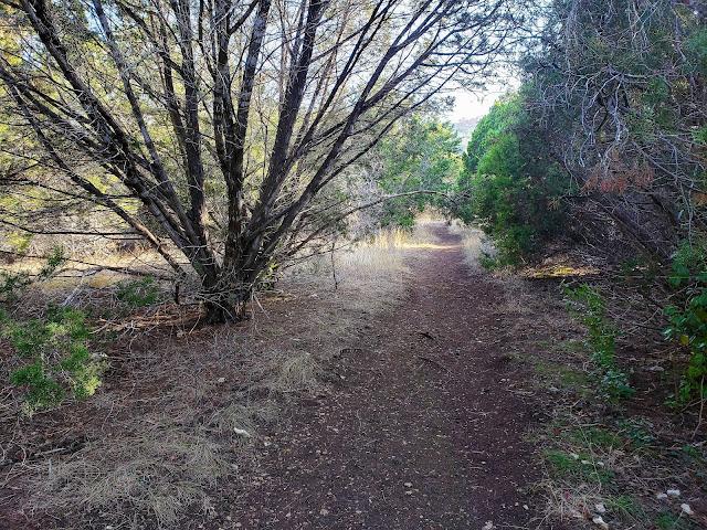 bull creek trail austin texas