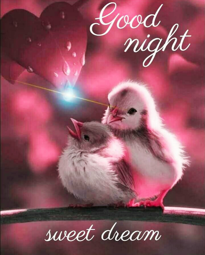 40 Good Night Images For Whatsapp Good Night Wishes Mixing Images