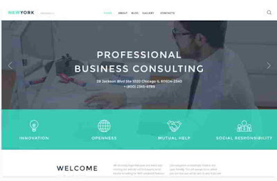 Business Consulting Services Wordpress Theme