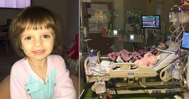 Родители оставили свою 3-летнюю малышку с няней, а через несколько часов девочка попадает в реанимацию и тщетно борется за свою жизнь…