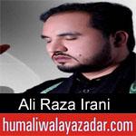 https://www.humaliwalyazadar.com/2018/09/ali-raza-irani-nohay-2019.html