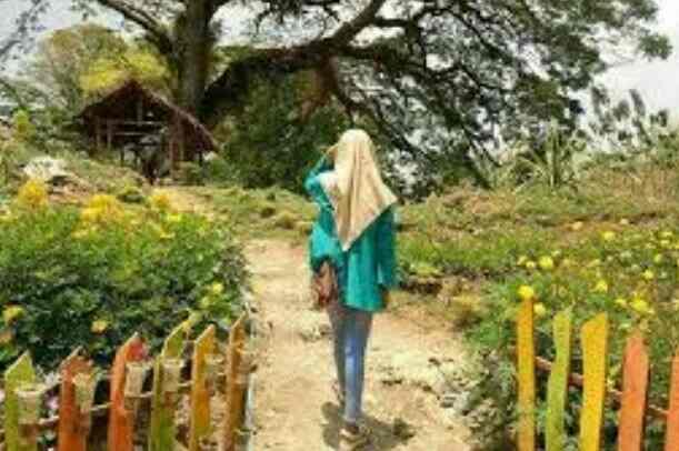 Alamat Lokasi & Rute Wisata Sendang Asmoro Ngino, Tuban [ Wisata Instgramable Tuban