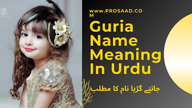 Guria Name Meaning In Urdu