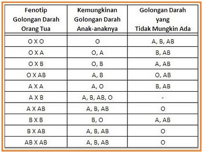 Tips Diet Golongan Darah A, B, AB Dan O