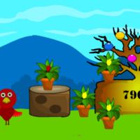 G2L Plant Nursey Escape