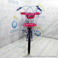 City Bike Turanza TR-2008 20 Inci