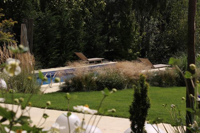 gradina moderna, peisagist, proiect gradina, design gradina, gradina naturalista, alexandru ghorghe, poteca studio