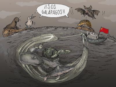 #SOSGALAPAGOS, la amenaza continua