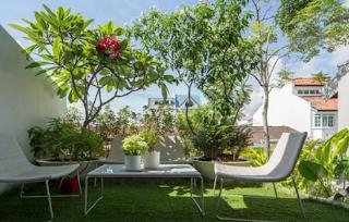 Anda Ingin Membuat Taman Dalam Rumah? Begini Tipsnya