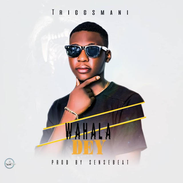 [Music]: Triggsmani - Wahala Dey (Prod.SenseBeat)