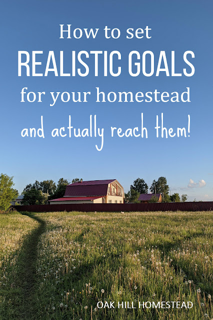 How to set realistic homestead goals, and actually achieve them!