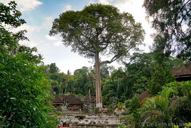 Goa Gajah - Ubud - Bali