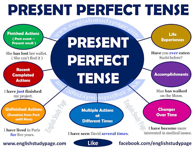 Have got exercises perfect english grammar