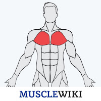 mustle app workout