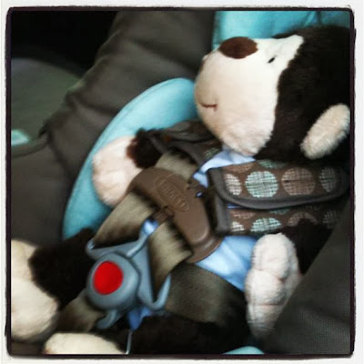 Stuffed Monkey in Car Seat