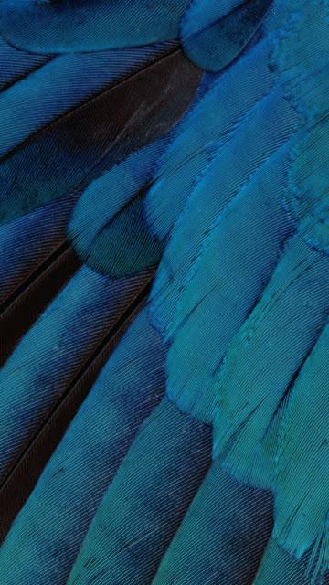 Hình nền cực đẹp cho điện thoại iPhone 7 - 22