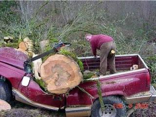 Log vs truck