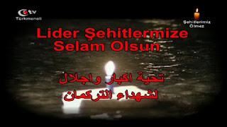 تردد قناة Turkmeneli