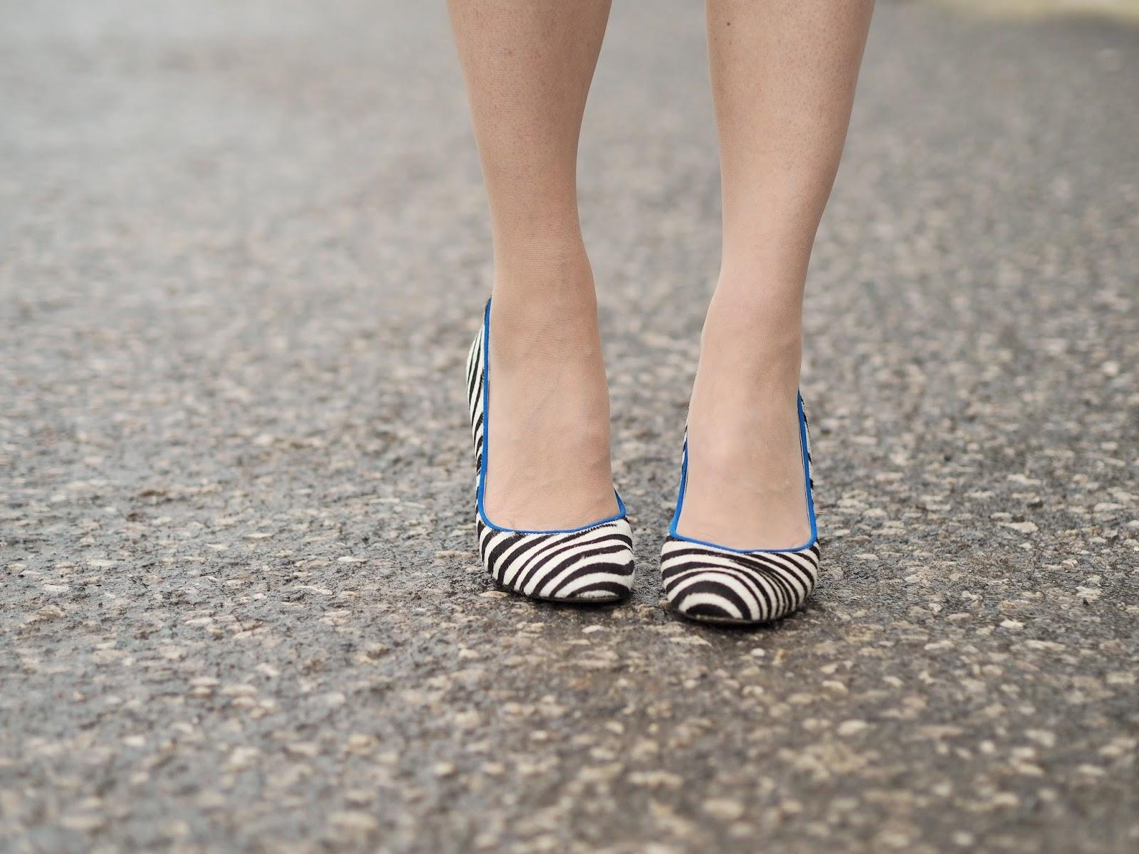 Zebra print shoes with cobalt blue heel and trim
