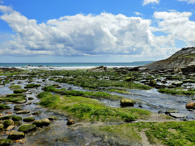 rock pools at Spit Beach, Cornwall at low tide