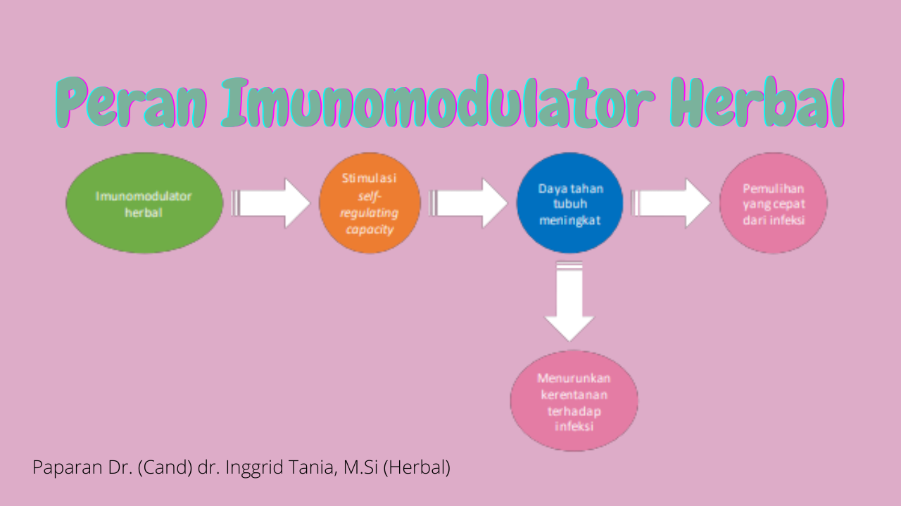 Peran Imunomodulator herbal