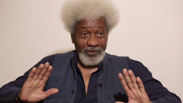 Soyinka calls for state of emergency in South West, gives reason