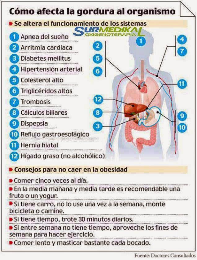 Gordura organismo