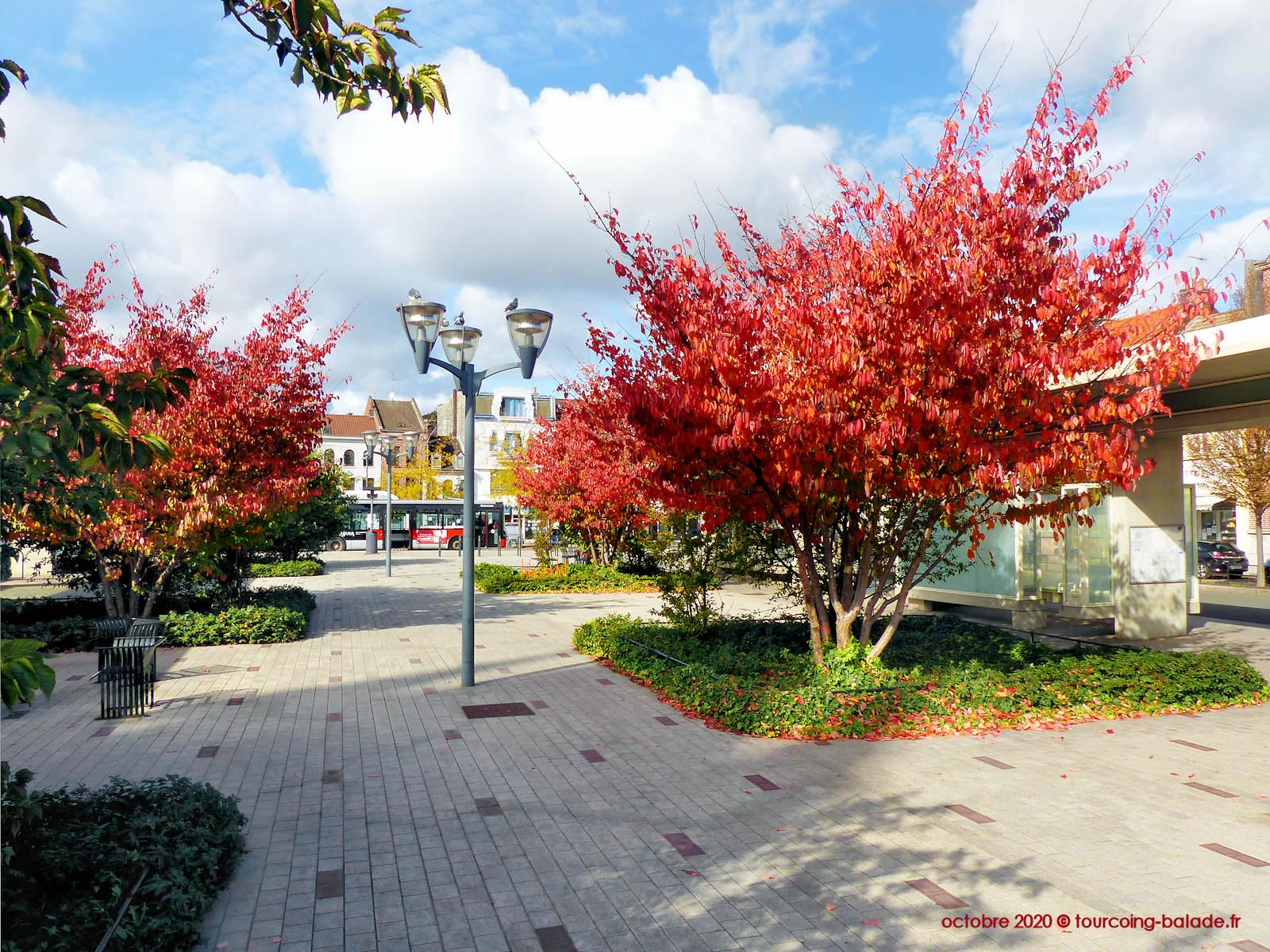 Place Roussel végétalisée, Tourcoing 2020