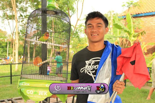 Lovebird Ollino Juara 1 & 1