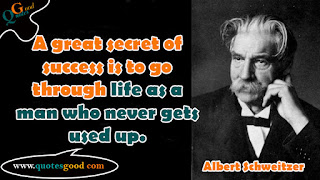 Albert Schweitzer motivational quotes