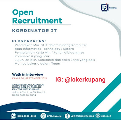 Lowongan Kerja Walking Interview LP3I Kupang Sebagai Kordinator IT