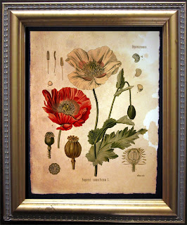 https://www.etsy.com/listing/199702458/vintage-poppy-flower-art-red-poppy?ref=shop_home_active_1&ga_search_query=poppy