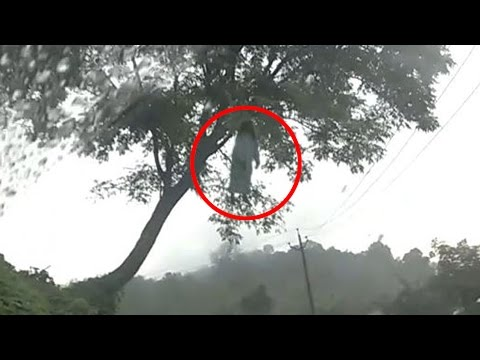 ghost capture on tree