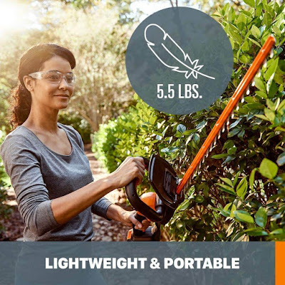 Best Price Cordless Hedge Trimmer