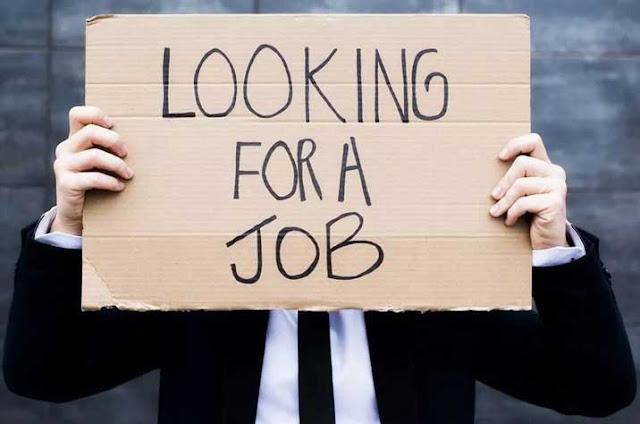 5 Cara Mencari Kerja Setelah Lulus Kuliah