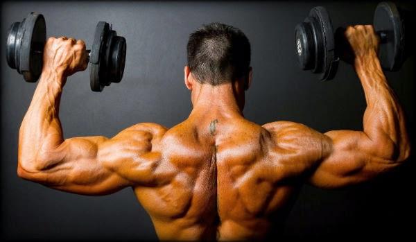 como desarrollar la masa muscular