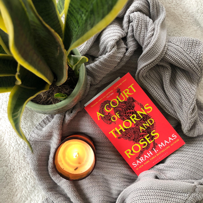 Red book cover next to a lit candle and yellow and green snake plant