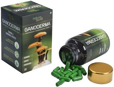 Ganoderma-Lucidum