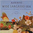 What I'm Reading: Wide Sargasso Sea