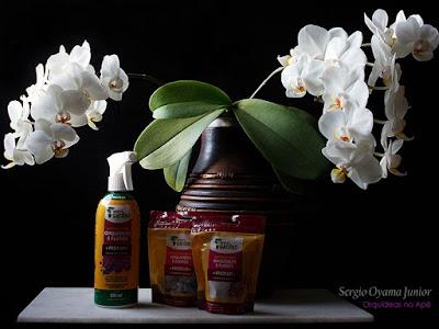 Fertilizantes para orquídeas e flores