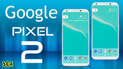 Google Pixel 2 | IMFROSTY
