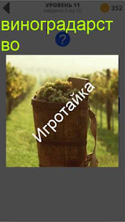 800 слов виноградарство ответ на 11 уровне