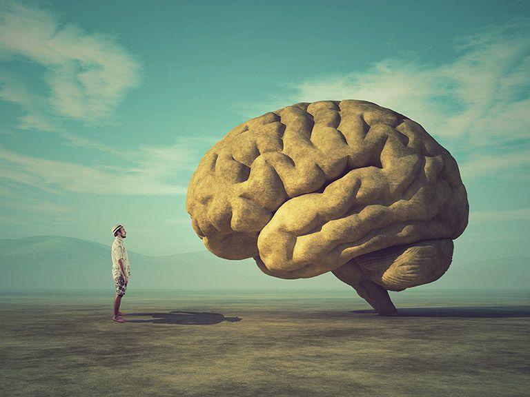 Cerebro y hombre