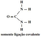 somente ligação covalente