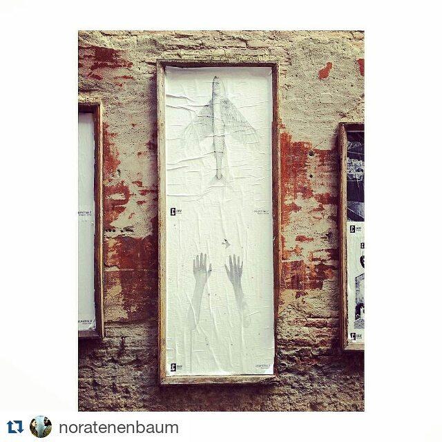 https://www.instagram.com/noratenenbaum/