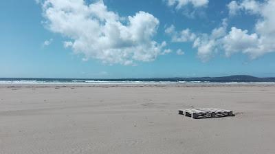 paleta na slnkom ožiarenej pláži